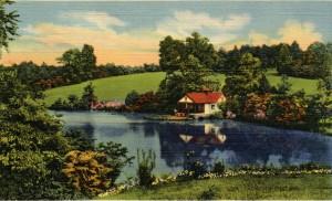 PC-Reynolda Estate Lake
